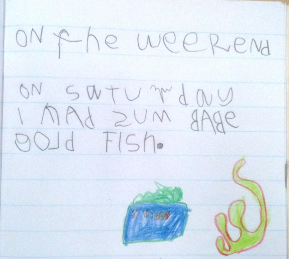 Week 7 Term 2 Writing Samples - 5 & 6 Year Olds (17 weeks of formal education for my Prep students! ) (2/6)